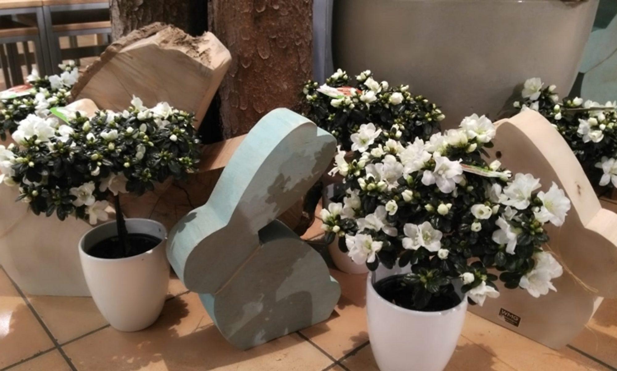 Ihr Blumenladen